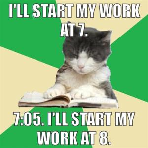 procrastination kitty