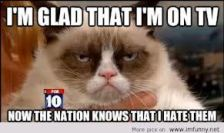 Grumpy Cat On TV