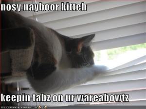 neighbor_cat