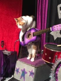 That guitar really sings!